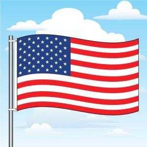5'x8' American Flag